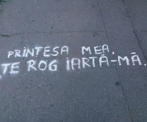 printesa and regrete image