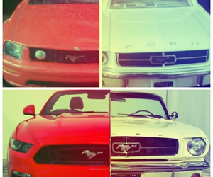 horse, mustang, and ford mustang image