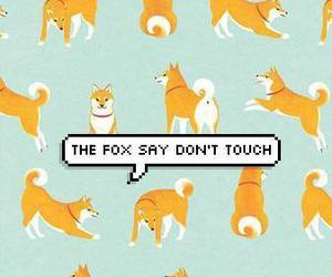 fox and wallpaper image