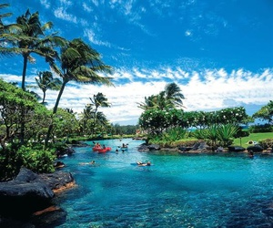 hawaii, summer, and blue image