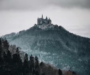 castle and forest image