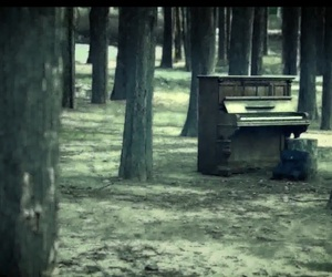 forest, lonely, and piano image