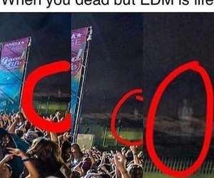 funny and edm image