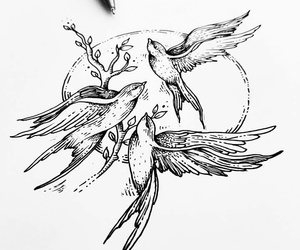 birds, draw, and tattoo image