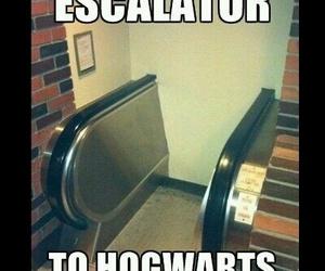 funny, hogwarts, and harry potter image