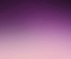 blur, pink, and purple image