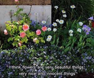 flowers, quote, and innocent image