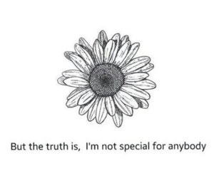 sad, quotes, and flowers image