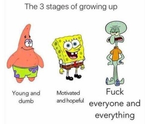 funny, spongebob, and life image