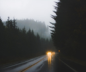 rain, car, and forest image