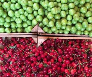 საქართველო, fruit, and photography image