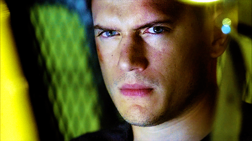 Wentworth Miller ♥ - Biography Facts