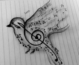 art, bird, and music image