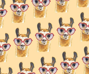 lama, pattern, and lockscreen image
