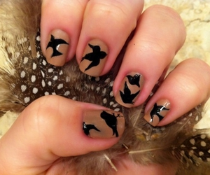 birds, fingers, and nails image