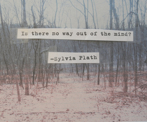 quotes, mind, and sylvia plath image