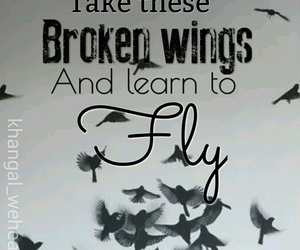 broken, wings, and fly image