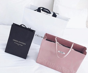 shopping, celine, and Louis Vuitton image