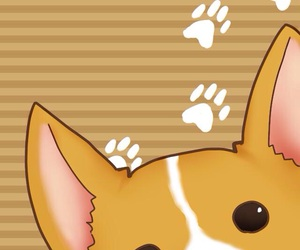 background, corgi, and wallpaper image