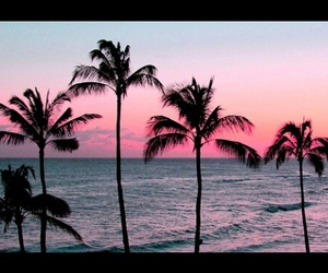 beautiful, paradise, and coolpic image