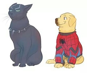 cat, dog, and Marvel image