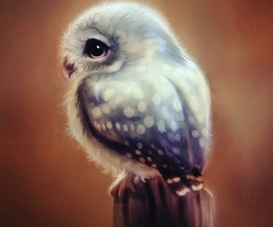 art, owl, and draw image