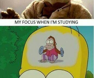 funny, lol, and study image