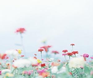 Image by h.huiwen
