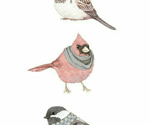 adorable, bird, and vintage image