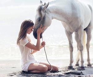 horse, josephine skriver, and model image