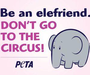 circus, go vegan, and peta image