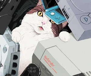 cat, game, and nintendo image