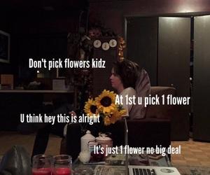 flowers, lol, and moreta image