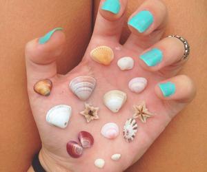 shell and girl image