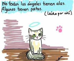 amor, desamor, and frases en español image