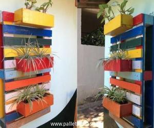 wall decor, wall planters, and pallets wall decor image