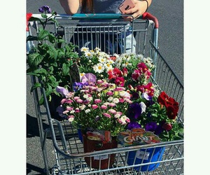 flower, mobil, and shoppingcart image