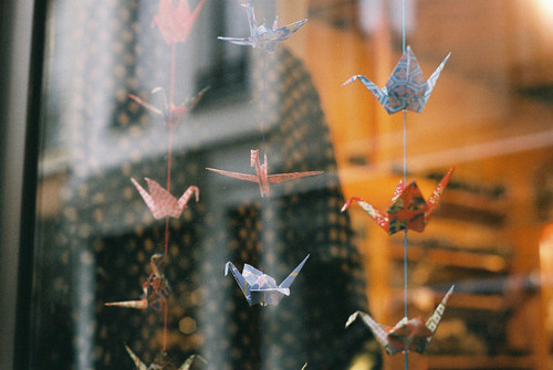 origami and photography image