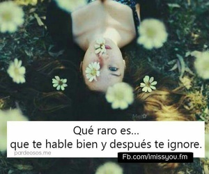cool, flores, and frases image
