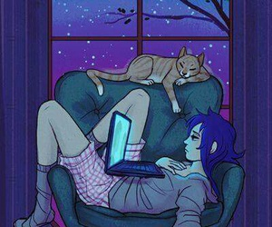 cat, night, and Cookies image