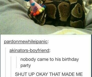 snake, funny, and birthday image