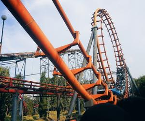 amusement park, dress, and fashion image