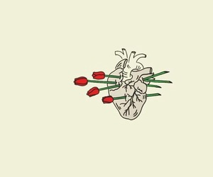 heart, header, and rose image