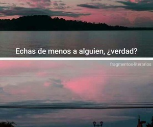 frases, desamor, and quotes image