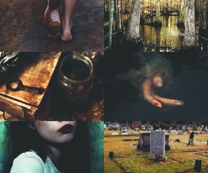 aesthetic, southern gothic, and swamp image
