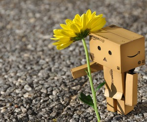 danbo, flower, and Hot image