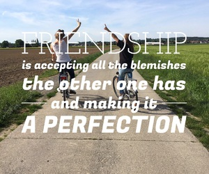 friendship, quote, and quotes image