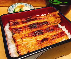 eel, food, and japanese food image