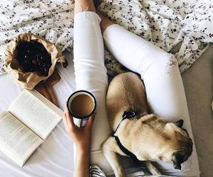 coffee, cute, and book image