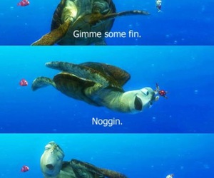 dude, finding nemo, and turtle image